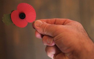 A picture of a poppy being held